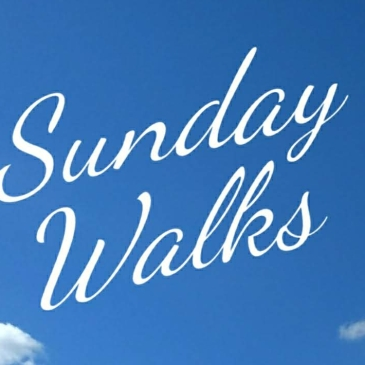 The words Sunday Walks on a background of blue sky with a few wispy white clouds